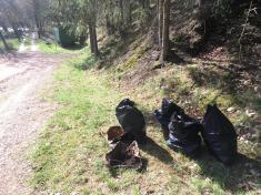 Číměř - čištění břehů Dalešické přehrady